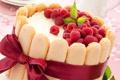Картинка ягоды, малина, печенье, торт, бант, крем, десерт