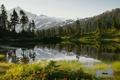 Картинка лес, трава, снег, деревья, горы, озеро, ель