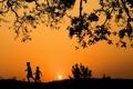 Картинка небо, деревья, закат, дети, силуэт
