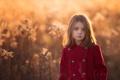 Картинка свет, девочка, пальто, Golden, боке