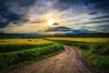 Картинка дорога, поле, небо, солнце