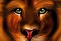 Картинка глаза, взгляд, обои, рисунок, лев, зеленые, живопись
