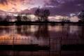 Картинка закат, деревья, затопление, вечер, вода, забор