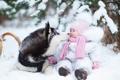 Картинка kid, dog, winter, husky, snow, childhood, kids