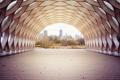 Картинка деревья, город, туннель, Чикаго
