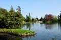 Картинка природа, пруд, парк, фото, Англия, Sheffield