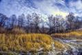 Картинка дорога, поле, осень, пейзаж