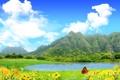 Картинка зелень, небо, трава, вода, облака, цветы, горы