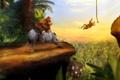 Картинка горилла, обезьяны, Носорог, donkey kong