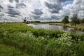 Картинка поле, трава, облака, деревья, цветы, мельница, речка