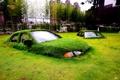 Картинка трава, машины, город, газон, остов