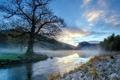Картинка пейзаж, туман, река, утро