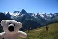 Картинка горы, природа, настроение, игрушка, мишка, путешествие, Домбай