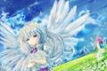 Картинка небо, девушка, облака, цветы, природа, ромашки, крылья